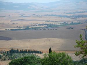 TuscanLandscape