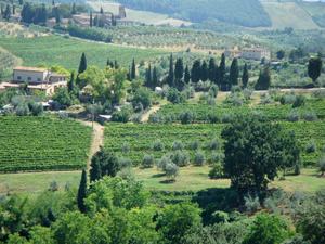 TuscanyLandscape