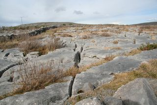 Limestone-in-The-Burren