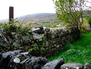 Irish-fence