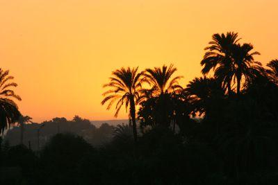 Sunset-on-the-Nile