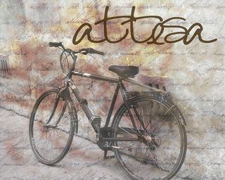 Italian-bicycle-1