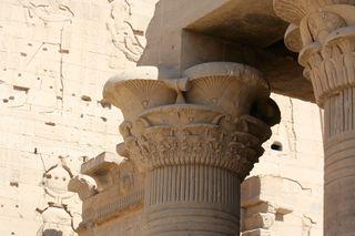 Lotus-columns