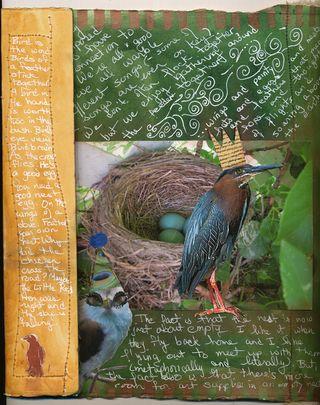 Bird-journal-03