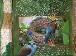 Bird-journal-04