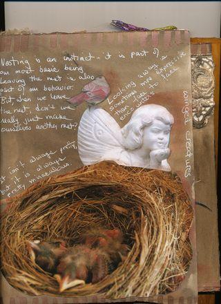 Bird-journal-05