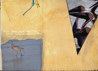 Bird-journal-09