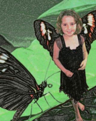 Butterfly-Brooke