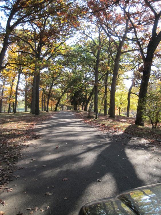 Milham-park