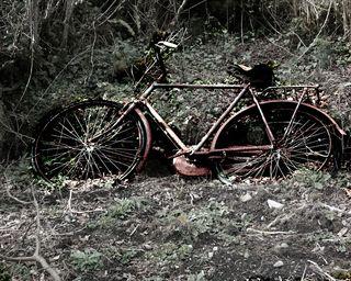Irish-bike-1