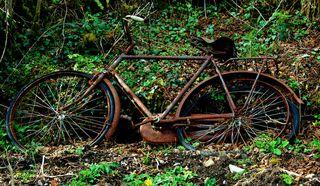 Irish-bike-2