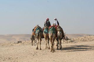 Men-on-camels