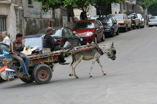 Men-on-cart-Alexandria
