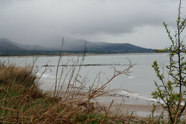 Dreary-inlet-photo