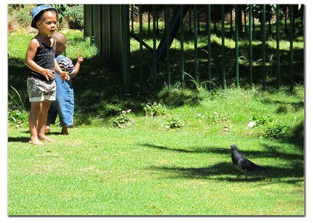 Cape-Town-park