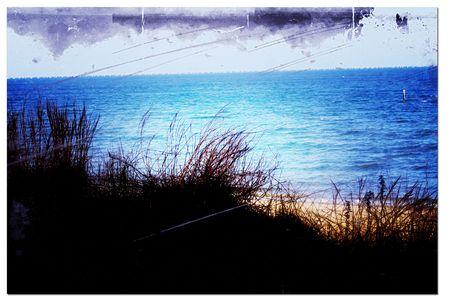 Chesapeak-dune-1