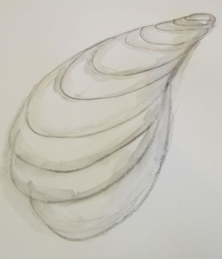 Stabilo-pencil