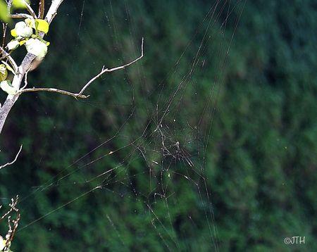 Kauai-web