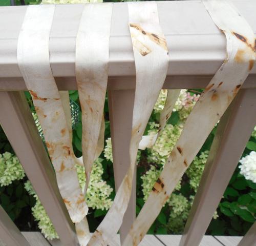 Rust-ribbon