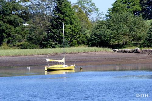 Boat-in-Lunenburg
