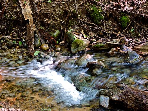 KZoo-nature-center-rapids
